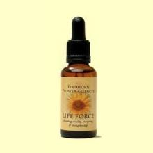 Esencia Floral FINDHORN LIFE FORCE Fuerza Vital