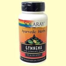 Gymnema - 60 Cápsulas - Solaray
